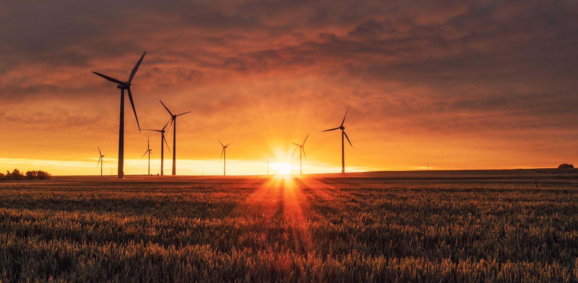 Momentum-Case-Windpark-Egeln-wind-farm