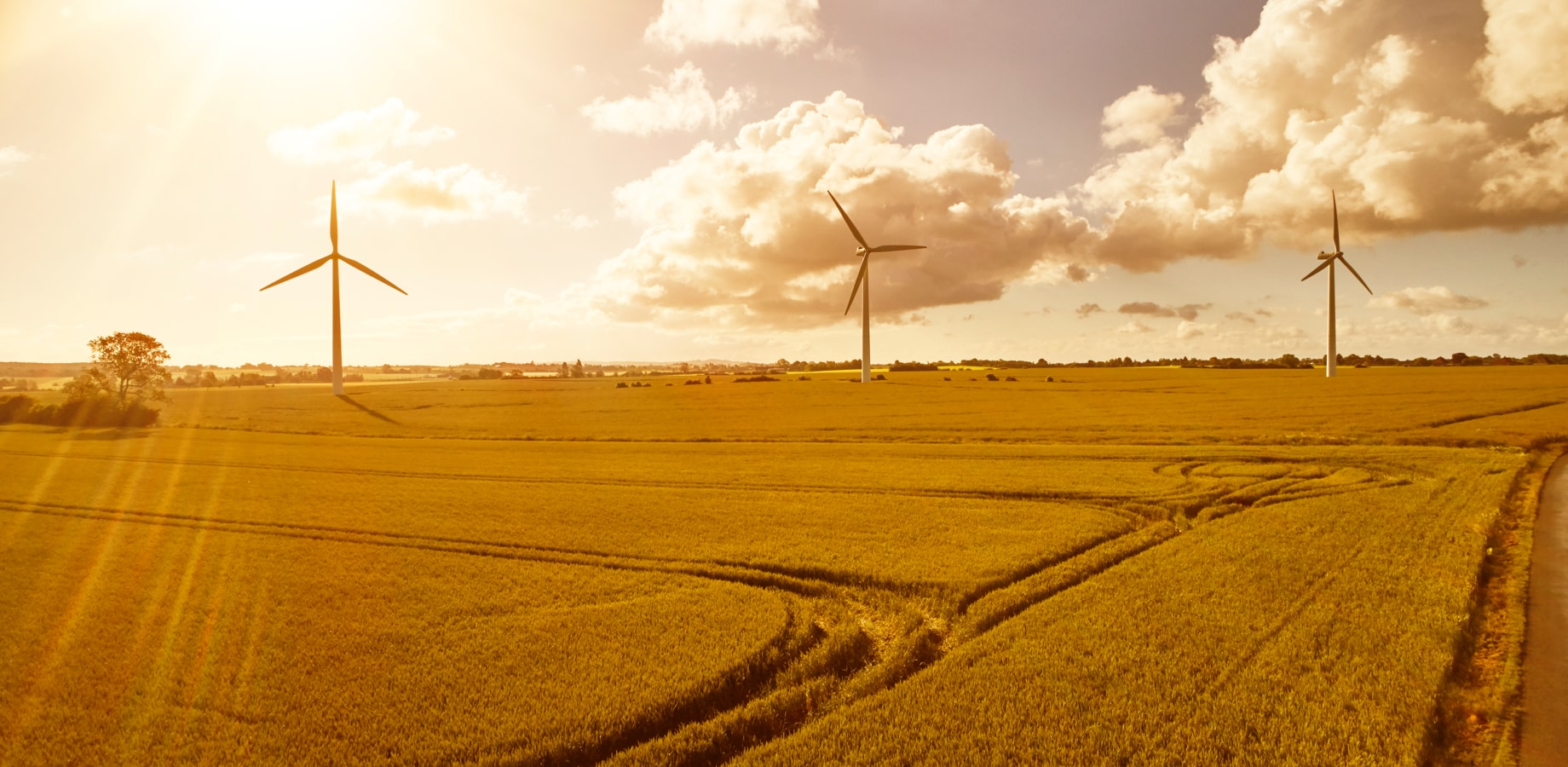 Momentum-Sale-and-Sourcing-Wind-Projects