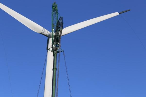 Momentum-Overvaagning-af-vindmoeller-udbedring