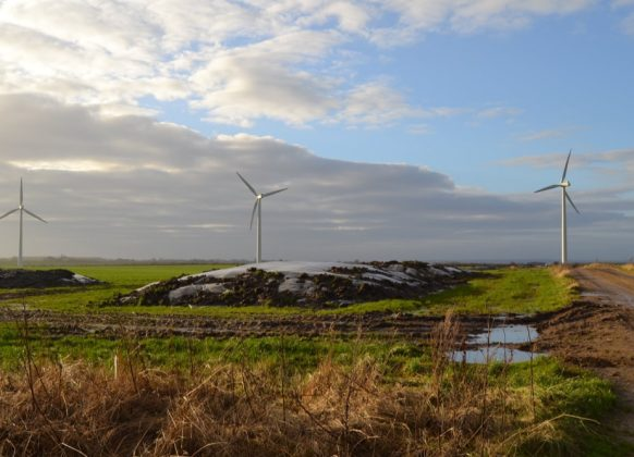 Momentum Case Green Power Partners