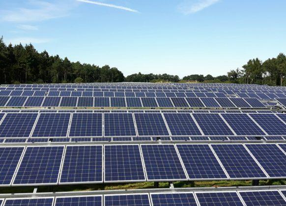 Momentum Case Flusi Repowering af solcellepark